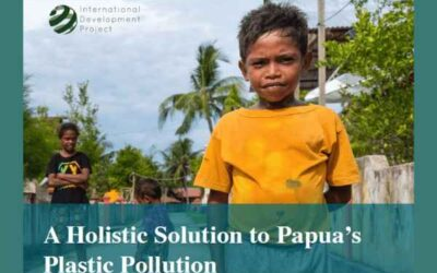 SEFA 2018 | A Holistic Solution to Papua's Plastic Pollution