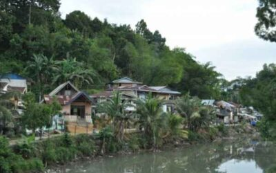 Blog – Kindersterfte in West-Papoea